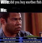 buy-new-fish.jpg