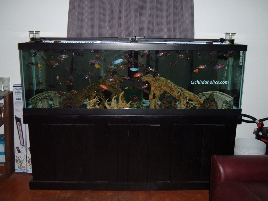 125-gallon-aquarium-002.JPG